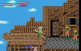 Golden Axe DOS Having jumped over the broken bridge, you find two female warriors awaiting you.