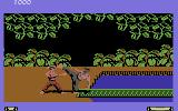 Fist: The Legend Continues Commodore 64 My enemy is winning
