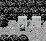 Picross 2 Game Boy Selecting a puzzle in the forest.