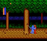 Castle of Dragon NES A wraith in the forest
