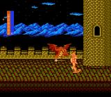 Castle of Dragon NES Fighting up through Darklarza's castle.