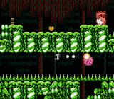 Little Samson NES K.O. can scurry along ceilings and plant time-delay bombs for dealing with enemies