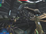 Aliens Versus Predator 2 Windows The marines come face-to-face with the viscious Alien Queen
