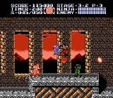 Ninja Gaiden II: The Dark Sword of Chaos NES Infiltrating a castle at dawn in level 3-2.