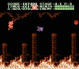 Ninja Gaiden II: The Dark Sword of Chaos NES It gets even more dangerous in level 4-1.