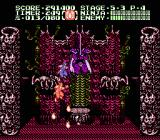 Ninja Gaiden II: The Dark Sword of Chaos NES The level 5 boss (Ashtar) -- but the game isn't over yet.
