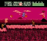Ninja Gaiden II: The Dark Sword of Chaos NES In level 6-2, Ryu busts into another castle.
