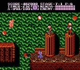Ninja Gaiden II: The Dark Sword of Chaos NES Starting out in the final level.