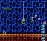 Dragon Fighter NES Cavern level