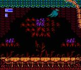 Dragon Fighter NES Level 2 boss-- giant centipede