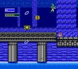 Dragon Fighter NES Water level