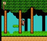 Whomp 'Em NES Collecting a power heart in the sacred woods