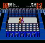 WWF Wrestlemania: Steel Cage Challenge NES Cage match