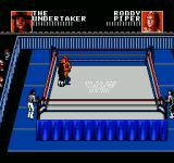 WWF Wrestlemania: Steel Cage Challenge NES Tag team wrestling