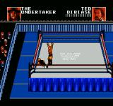 WWF Wrestlemania: Steel Cage Challenge NES Victory is sweet