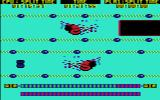 European Games Commodore 64 The computer swimmer has already reached the end of the pool