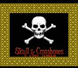 Skull & Crossbones NES Title screen