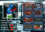 Greatest Heavyweights Genesis Between fights, you can choose three types of training to improve your fighter abilities.