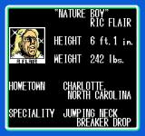 WCW: World Championship Wrestling NES Some of the wrestlers: Ric Flair