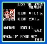 WCW: World Championship Wrestling NES Ricky Steamboat