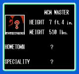 WCW: World Championship Wrestling NES And the big boss: WCW Master