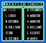 WCW: World Championship Wrestling NES Choose your wrestler. Can pick anyone except the mystery WCW Wrestler