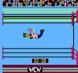 WCW: World Championship Wrestling NES Performing a non-submission special move.