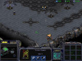 StarCraft Windows Lt. Sarah Kerrigan using ghost stealth mode, attacking Protoss spider-alike creature.