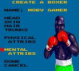"Evander Holyfield's ""Real Deal"" Boxing Game Gear Creating a boxer."