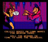 Skull & Crossbones NES Between stages the princess will appear begging for your help.