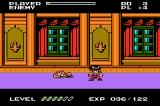 Capcom Classics: Mini Mix Game Boy Advance Mighty Final Fight: inside Mr Big's mansion