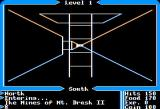 Ultima I: The First Age of Darkness Apple II Dungeon