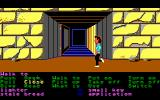 Zak McKracken and the Alien Mindbenders DOS Near the entrance to the pyramid
