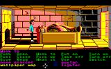 Zak McKracken and the Alien Mindbenders Amiga Looking around a tomb.