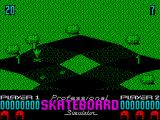 Pro Skateboard Simulator ZX Spectrum After you've crashed you can place where the skater will reappear