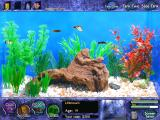 Fish Tycoon Windows Game start, with 4 baby fish