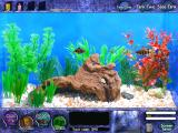 Fish Tycoon Windows Ready to breed