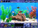 Fish Tycoon Windows A third generation now