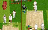 Ian Botham's Cricket DOS At the very beginning of the match...The ball is still in a hand of your player...