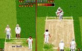 Ian Botham's Cricket DOS Trying to smatch the ball...