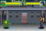 Teenage Mutant Ninja Turtles Game Boy Advance Fighting against Casey Jones.
