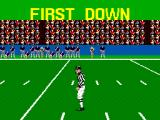 Walter Payton Football SEGA Master System The judge explain what doesn't really need an explanation