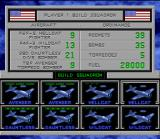 Carrier Aces SNES United States Air Force Squadron setup