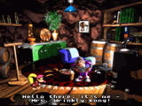 Donkey Kong Country 3: Dixie Kong's Double Trouble! SNES Getting advices