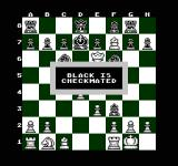 The Chessmaster NES Black is checkmated so white (which is me) wins