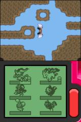 Pokémon Pearl Version Nintendo DS Nice water effect