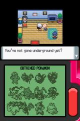 Pokémon Pearl Version Nintendo DS Obtained Pokemon