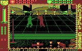 Knight Games DOS Fighting with an axe (CGA)