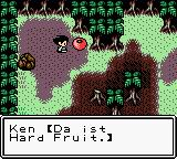 Survival Kids Game Boy Color Hard Fruit.... yeah!