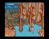 Ninja Gaiden Amiga This is a tricky place. The ninja dies if he falls into the water. I guess he skipped the swimming-lessons at ninja-school.